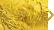 hr-gold